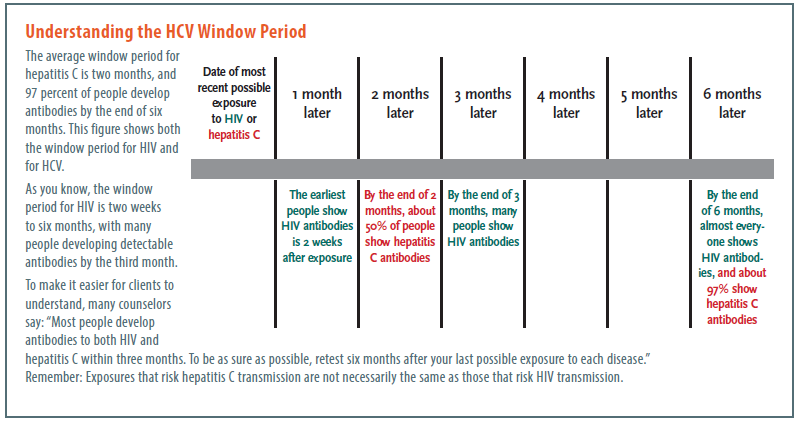 Understanding the HCV Window Period